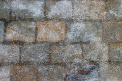 Crust of ice on the pavement of the street Royalty Free Stock Photography