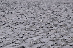 The crust of salt on the bottom  the curative mud dry lake Royalty Free Stock Images