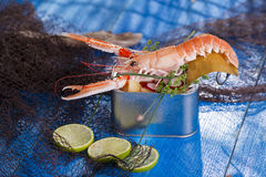 Crustacean canned Stock Photos