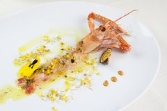 Crustacean cooked and presented in an elegant gourmet composition. Preparing a gourmet plate in a restaurant Stock Photo