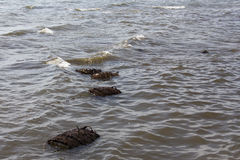 Crustacean nets in the sea. Of Cambodia royalty free stock photography
