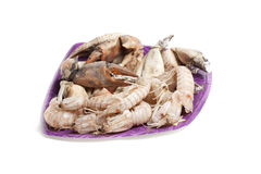 Crustacean plate. A plate full of seafood royalty free stock photography