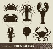 Crustacean set Royalty Free Stock Photos