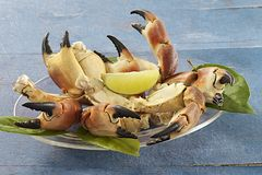 Crustaceans - Crab Claws Stock Photo