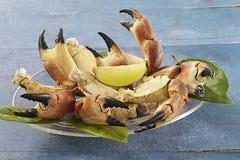 Crustaceans - krabów pazury Zdjęcie Stock