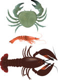 Crustaceans Royalty Free Stock Image