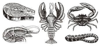 Free Crustaceans, Shrimp, Lobster Or Crayfish, Salmon Steak, Crab With Claws. River And Lake Or Sea Creatures. Freshwater Stock Photography - 115727502