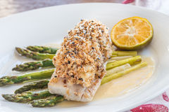 Crusted Mahi Mahi Royalty Free Stock Image