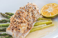 Crusted Mahi Mahi Royalty Free Stock Images