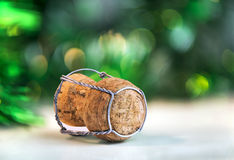 Crusts of sparkling wine Stock Images