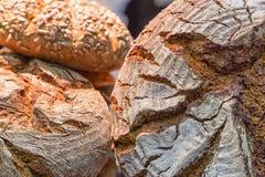 Crusty_bread imagem de stock royalty free