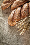 Crusty breadstick wheat ears on hessian background.  royalty free stock images
