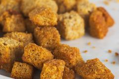 Crusty croutons stock photography