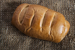 Crusty fresh homemade rye bread Royalty Free Stock Images