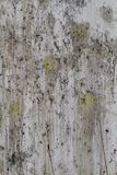 Crusty Grimy Grunge Texture Stock Images