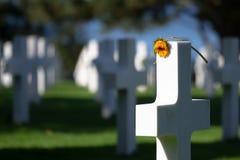 Cruz blanca con la flor, cementerio americano de Normandía, Francia Imagen de archivo