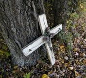 Cruz blanca contra árbol Imagen de archivo libre de regalías