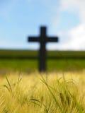Cruz con los campos de trigo Foto de archivo libre de regalías