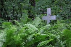 Cruz cristiana en matorrales salvajes de la vegetación verde en el cementerio viejo Fotos de archivo