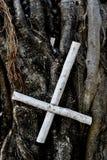 Cruz dada vuelta de San Pedro en un árbol imagen de archivo libre de regalías