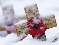 Cruz de la conmemoración con la amapola en la nieve Fotografía de archivo libre de regalías
