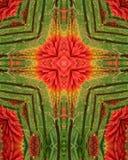 Cruz de la explosión de la flor Fotos de archivo libres de regalías