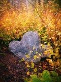 Cruz de pedra no cemitério velho Fotos de Stock