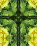 Cruz del flor del cacto Imagen de archivo libre de regalías