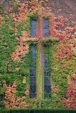 Cruz do outono fotografia de stock