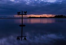 Cruz dos carneiros e do galo da noite Imagem de Stock