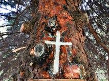 Cruz en un árbol Imagen de archivo libre de regalías