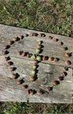Cruz hecha de bellotas en un círculo Imágenes de archivo libres de regalías