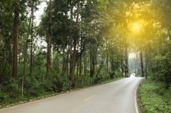 Cruz local del camino del paisaje la selva tropical con la luz anaranjada Imagen de archivo
