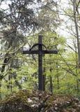 Cruz velha na floresta Fotos de Stock