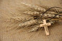 Cruz y trigo cristianos Foto de archivo libre de regalías