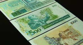 Cruzados Brasile Immagine Stock Libera da Diritti