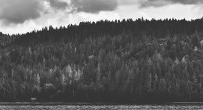 Cruzamento com a área de Cushman do lago Imagens de Stock