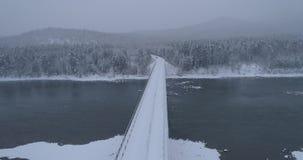 Cruzamento da floresta do inverno sobre o rio Biya, Altai, Rússia 2 filme