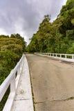Cruzamento de estrada a floresta úmida Imagens de Stock