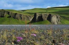 Cruzamento de estrada um campo de lava Fotografia de Stock