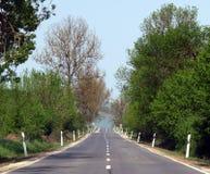 Cruzamento de estrada vazio um o mais forrest Foto de Stock