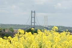 Cruzamento de rio Kingston Upon Hull da ponte de Humber fotografia de stock royalty free