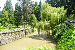 Cruzamento de rio rápido da montanha o parque da cidade com pinhos e as árvores de salgueiro verdes em um dia de mola do verão Fo foto de stock royalty free