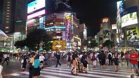Cruzamento de Shibuya Foto de Stock