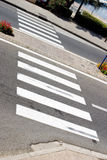 Cruzamento de zebra abstrato com água no fundo Imagem de Stock Royalty Free