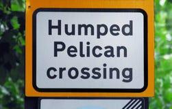 Cruzamento do pelicano de Humped dos SINAIS foto de stock