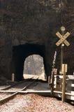 Cruzamento e túnel de estrada de ferro Imagens de Stock Royalty Free