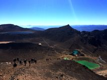 Cruzamento Nova Zelândia de Tongariro Fotos de Stock Royalty Free