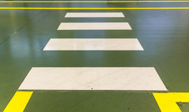 Cruzamento pedestre da zebra Foto de Stock
