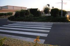 Cruzamento pedestre no arbusto Imagens de Stock